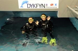 proevedyk-i-pool-dykfyn-8