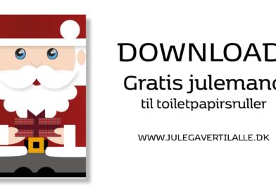 PRINT SELV: Julemanden til toiletpapirsrulle
